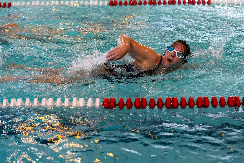 Brevet de natation